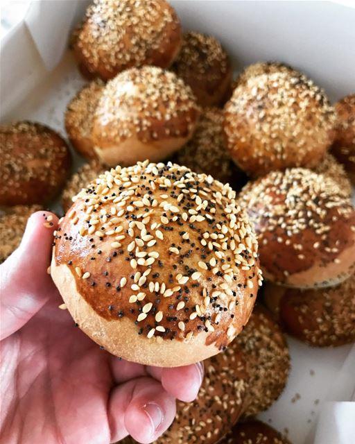 Mini pain 🍔 livelovefood livelovebeirut beirut zahle bekaa pastry ...