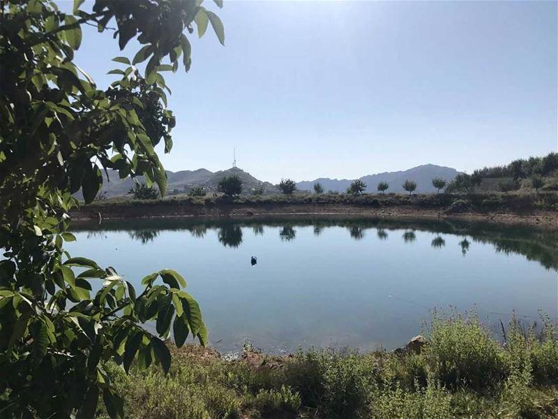"""اللقلوق (📸 """"لبنان 24"""") . . . Lebanon lake livelovelebanon nature ..."""