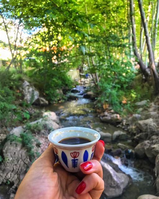 Rise & shine everyone! Coffee is on me ☕️ ... (Bsatin Al-Ossi Waterfalls)