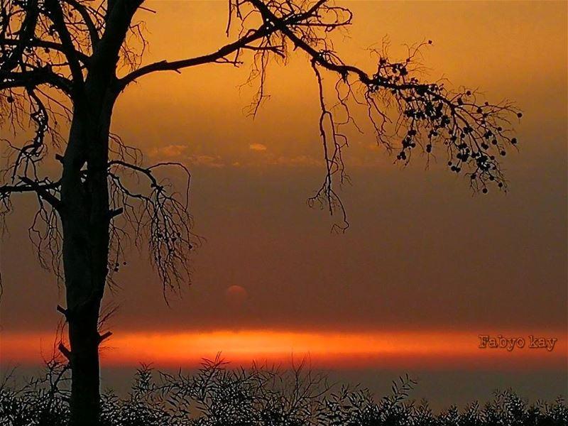 lebanon sunset sunsetporn sunsetlovers sunset_madness sunsets... (Sawfar, Mont-Liban, Lebanon)