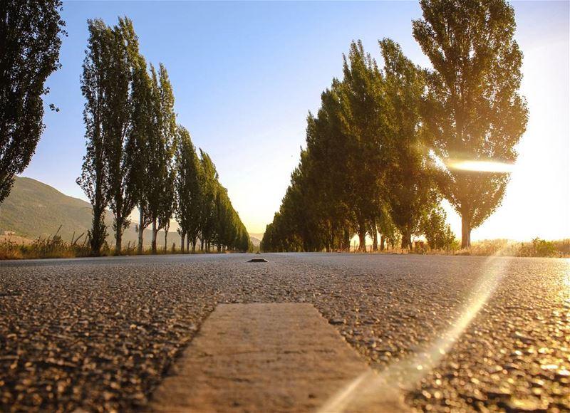 The road to nowhereEarly Morning Wanders with @lebanese.wanderers... (`Ammiq, Béqaa, Lebanon)