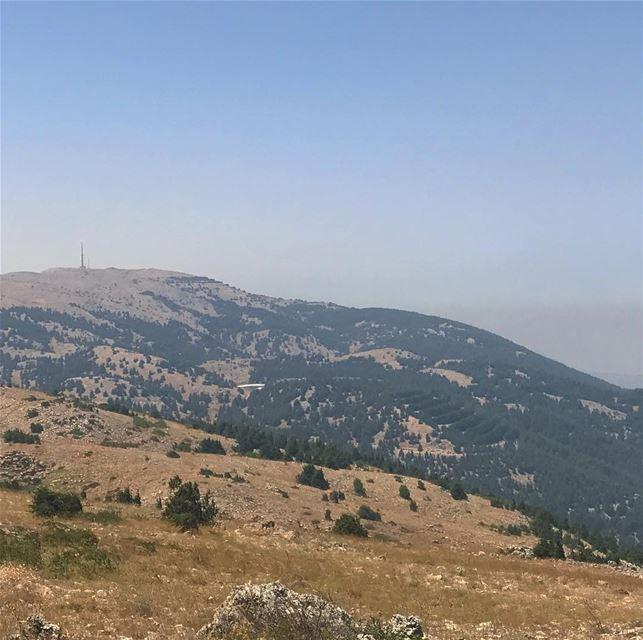 I would rather be there.... lebanon lebanese livelovehiking ... (Al Shouf Cedar Nature Reserve)