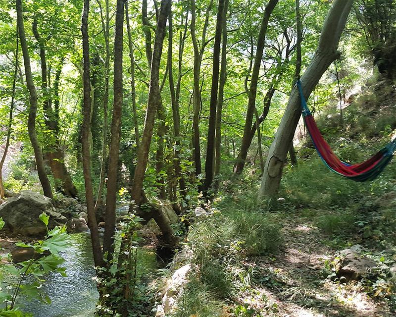 Who wants to hang hammock river peaceful unknownlocation hiddengem...