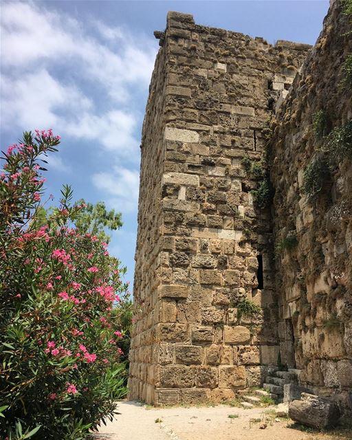 bybloscastle byblos jbeil livelovebyblos livelovebeirut ... (Byblos Castle)