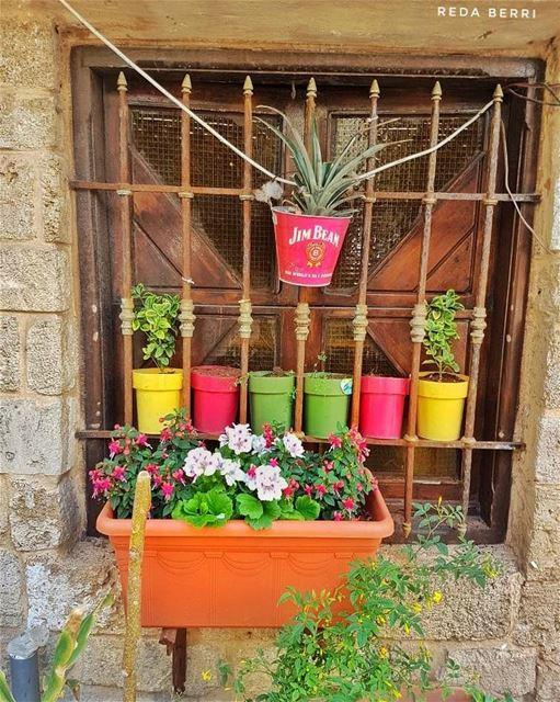 شباك حبيبي 🌹🌼🌸🌻🌺💮 goodmorning flowers window summer colorful ... (Tyre, Lebanon)