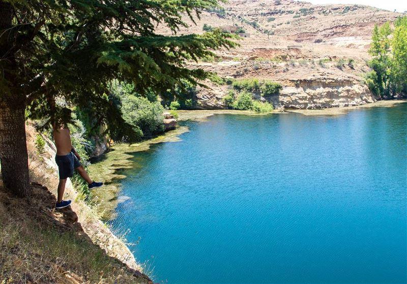 Go where you feel most alive 🏞..... nature lake lagoon trees... (El Laqloûq, Mont-Liban, Lebanon)