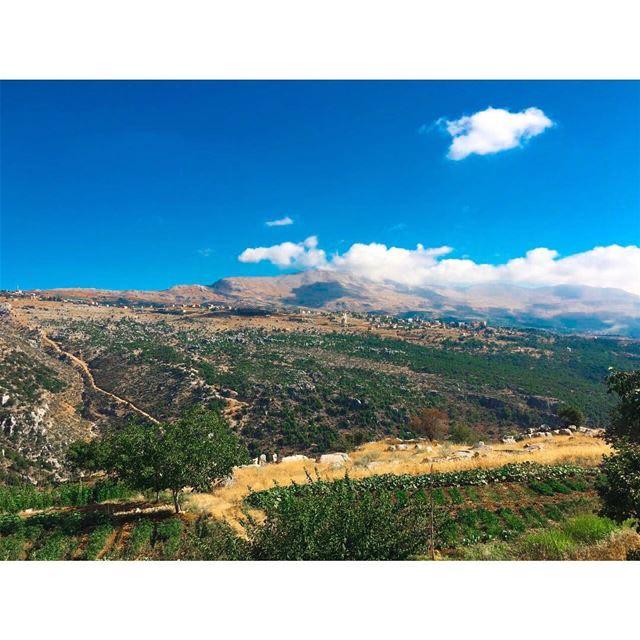 ⛰🌴 (Zahlé, Lebanon)