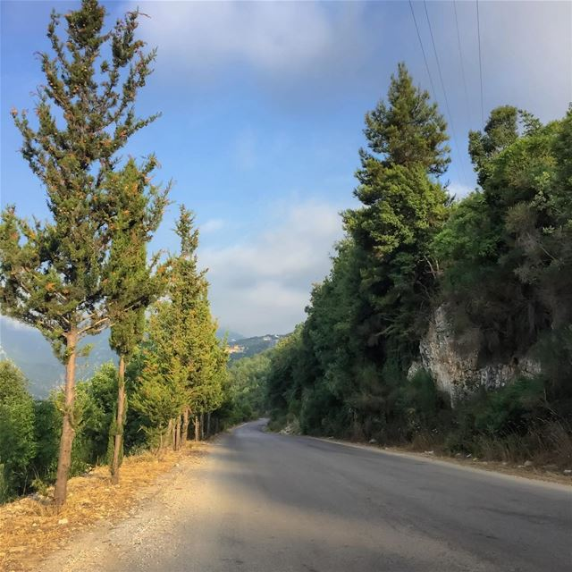 Mountain roads trees landscape landscape_captures rural_love mountain...
