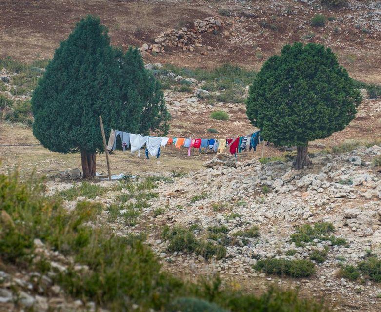 Fancy washing line! lebanon ... (As Sawaqi, Liban-Nord, Lebanon)