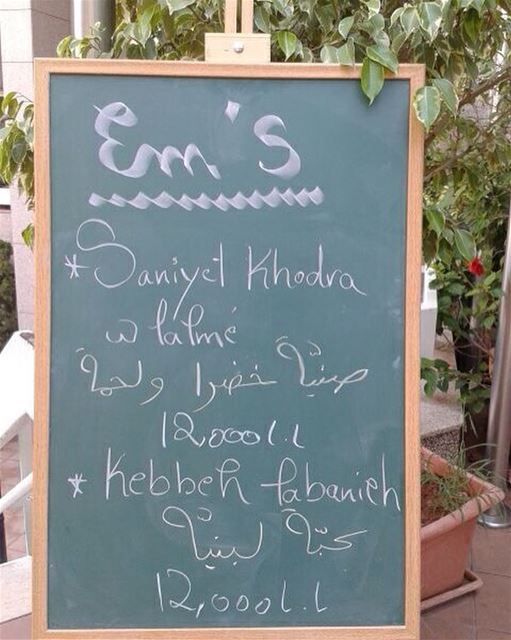 Today's Teaser Menu: صنية خضرا و لحمة and كبة لبنية. Give us a call ☎️ 03... (Em's cuisine)