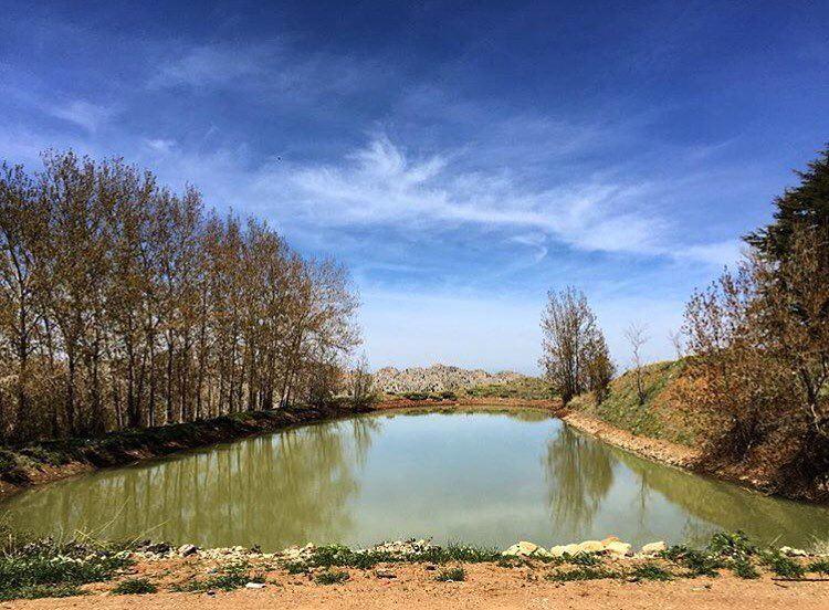 I'm at peace with nature... i'm safe! (El Laqloûq, Mont-Liban, Lebanon)
