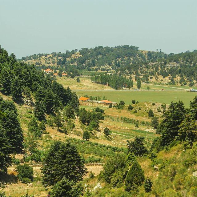 سهلة القموعة بالجبل 🌲🍃🌳... gogreen nature lebanon akkar ... (Ammou3a - Akkar)