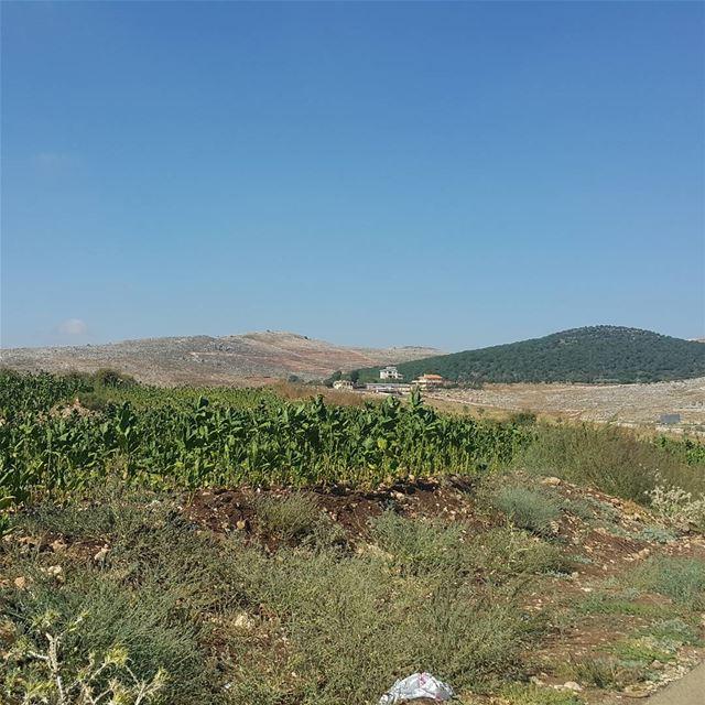 yaroun yarounday mysouth sputh southlebanon🇱🇧 amazingview lebanon...