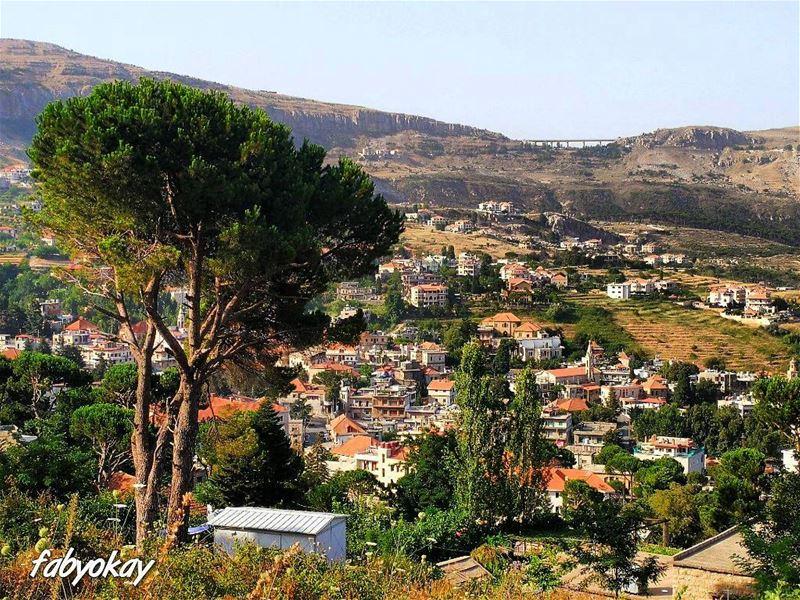 ➖➖➖➖➖➖➖➖➖➖➖➖➖➖➖➖Location :hammana/Lebanon Camera :canon 6d Photography : (Hammana)