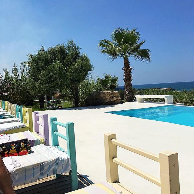 Have a super sunny day❤️ whatsuplebanon ig_lebanon insta_lebanon ... (Lazy B)