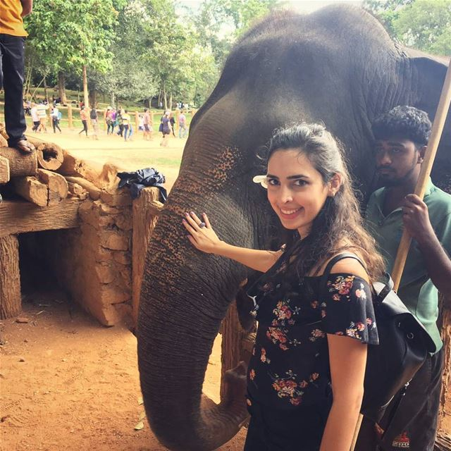 girl with the elephant pinnawala flower walk relax landscape ... (Pinnawala Elephant Orphanage, Srilanka)