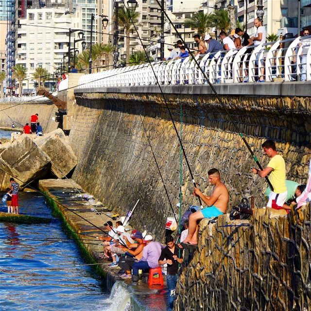 Waiting in line...🎣🎣 beirut  lebanon  splash  sea   bluesea  rocks ... (Ain El Mreisse, Beyrouth, Lebanon)
