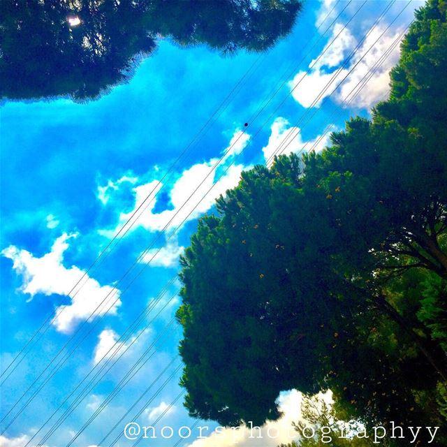 Am i in heaven?- noorsphotographyy bsalim countrylodgeresort ...