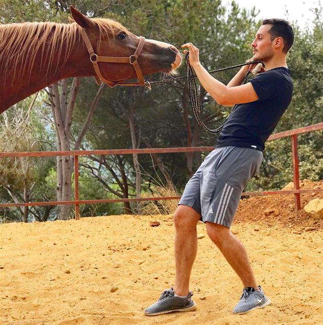 A horse bond 🐎 ArabianHorse WAHO Lebanon ... (Beit Meri, Mont-Liban, Lebanon)