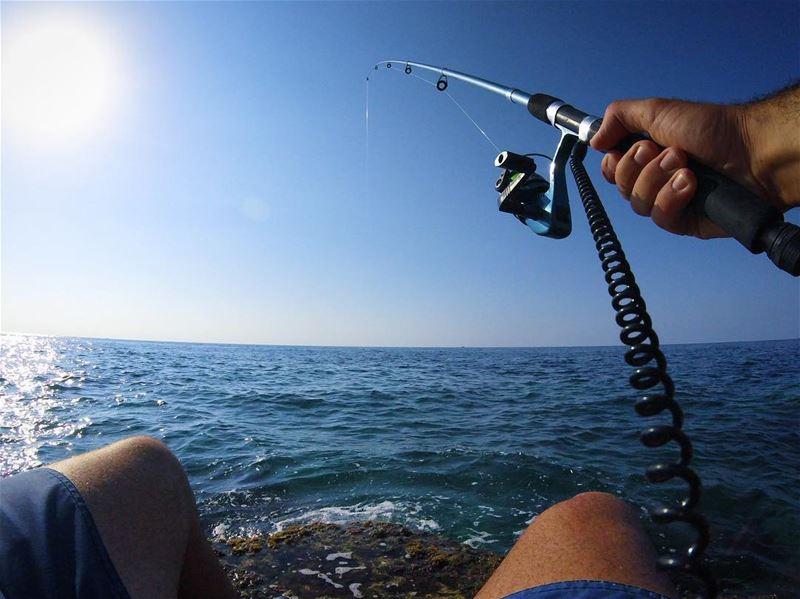 Gone Fishin' 🎣🇱🇧