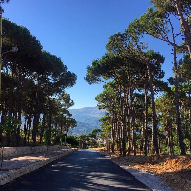 My hometown ❤ livelovelebanon livelovebeirut livelovebolognia ... (Bois De-Boulogne, Mont-Liban, Lebanon)
