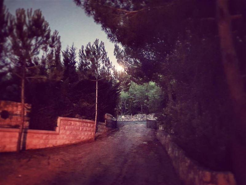 Leave a Light on home moonlight moonrise kingdom surreal night ... (Tibnin)