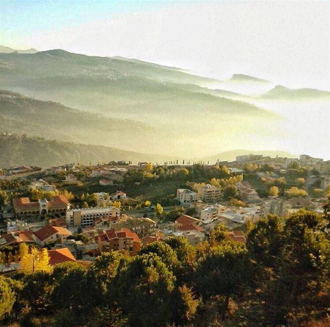 Soaking up some rays ☀️ (Ehden, Lebanon)