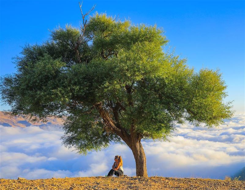 Everything starts with a dream 🎈- 📸 @haigmelikian (Qanat Bakish, Mont-Liban, Lebanon)
