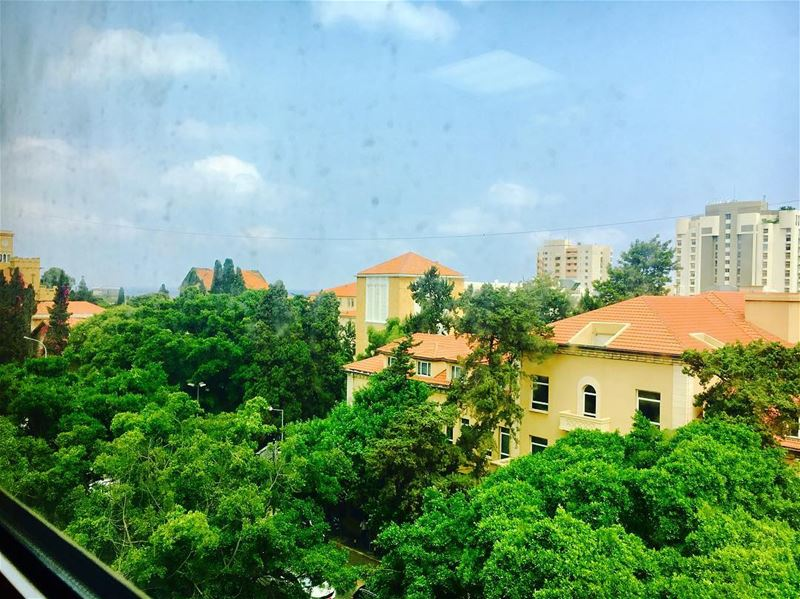 ever green aub aubmc ... (AUBMC - American University of Beirut Medical Center)