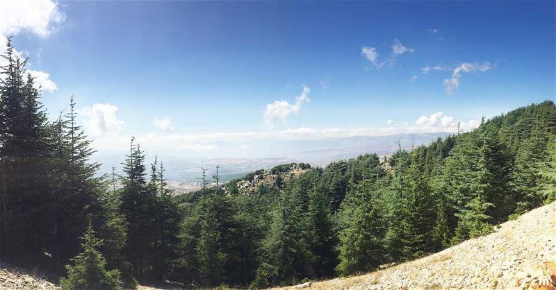 -Hike more, worry less🌲- ... ptk_lebanon amazinglebanon lebanon_hdr ... (Al Shouf Cedar Nature Reserve)