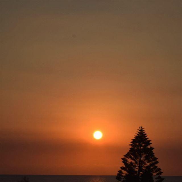 sunset beautyallaround sunsetlovers romance ... (El Madfoûn, Liban-Nord, Lebanon)