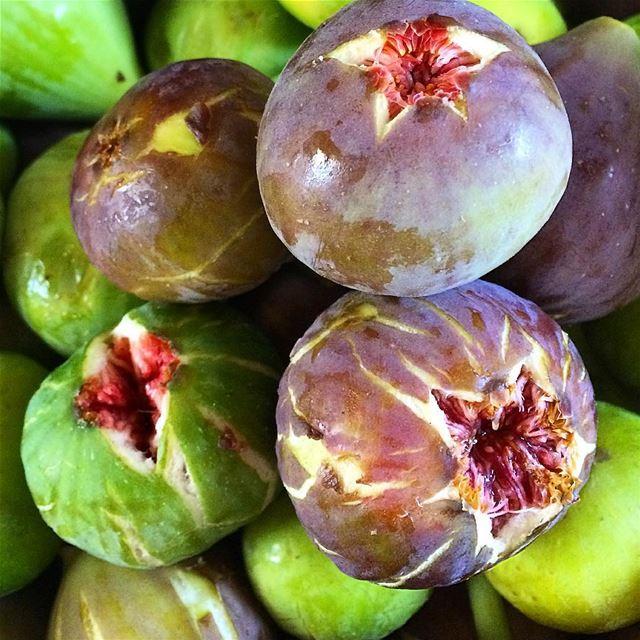 freshfigs figs summertime lebanontimes lebanoneats tob ...