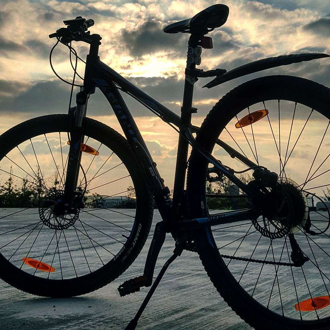 You can Own a Tool of Happiness..💙 bicycle .. freedom fitness... (Beirut, Lebanon)