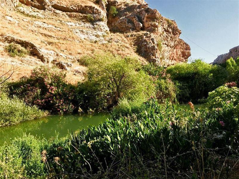 "سحر البقاع (بعدسة ""لبنان 24""). . . Lebanon lake Bekaa instalebanon ..."