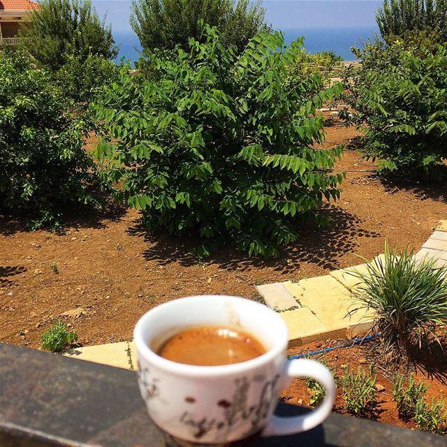 ☕️🌳 morningmotivation coffeetime lebanonspotlights lebanontimes ...