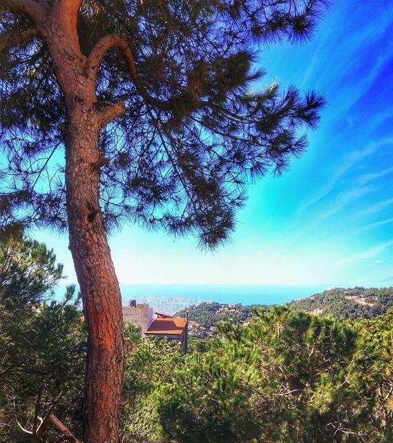 Beautiful Brummana ❤ nature naturelovers naturelover lebanon ... (Brummana)