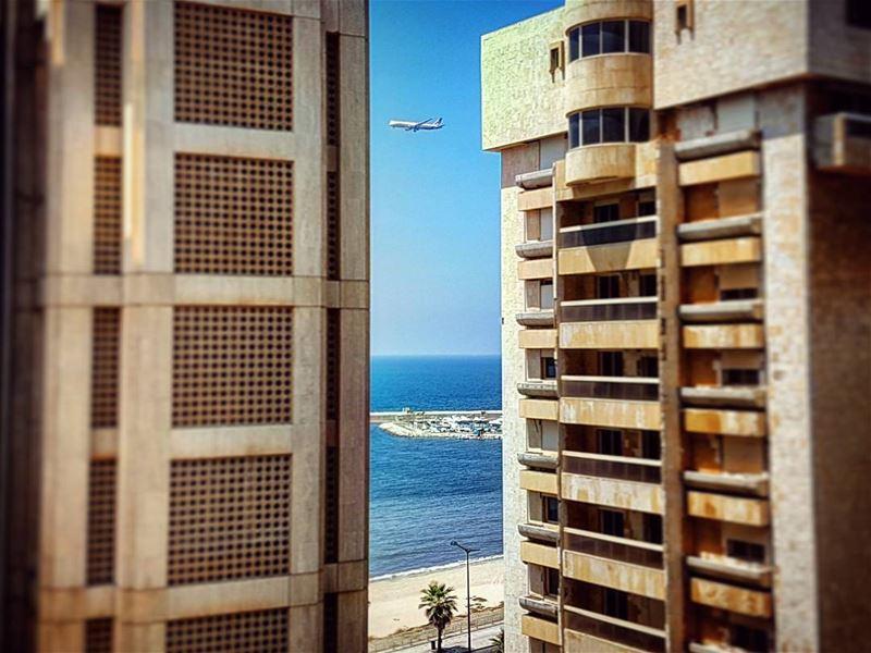 What Flies Between mediterranean days ramletelbayda beirut lebanon ... (Beirut, Lebanon)