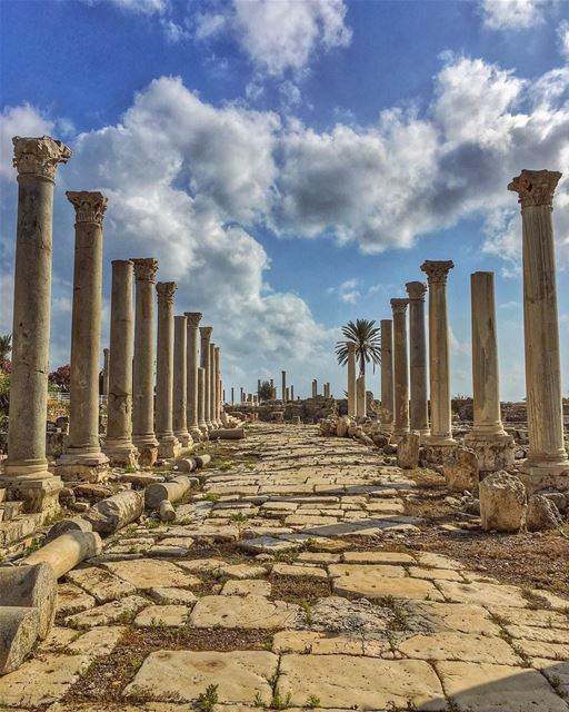 We fall, we rise, every scar engraved into our eyes, like ruins of... (Tyre, Lebanon)