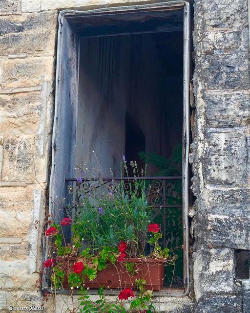 nostalgia old oldhouse window heritage flowers abandoned dibiyee...