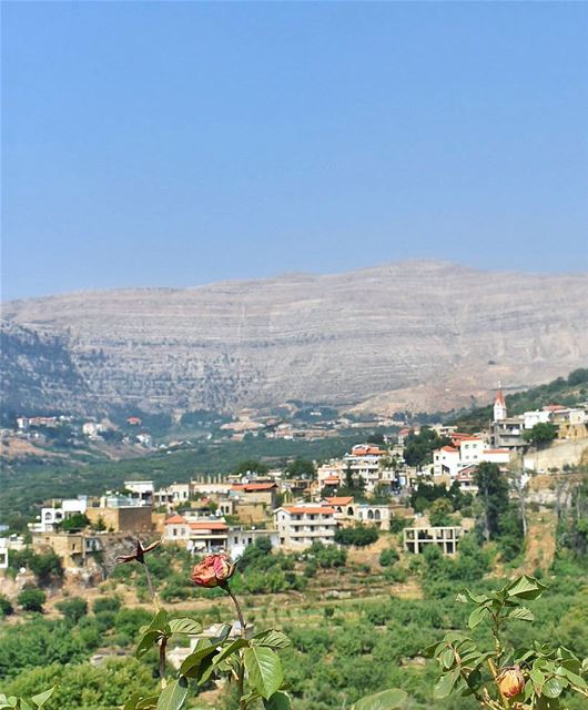 Happiness is a direction, not a place - Sydney Harris ... (Kfar Sghâb, Liban-Nord, Lebanon)