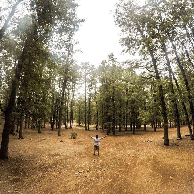 Lost in paradise 👣 peterwenmaken Credits 📸 @louaynemerkabalan (`Akkar, Liban-Nord, Lebanon)