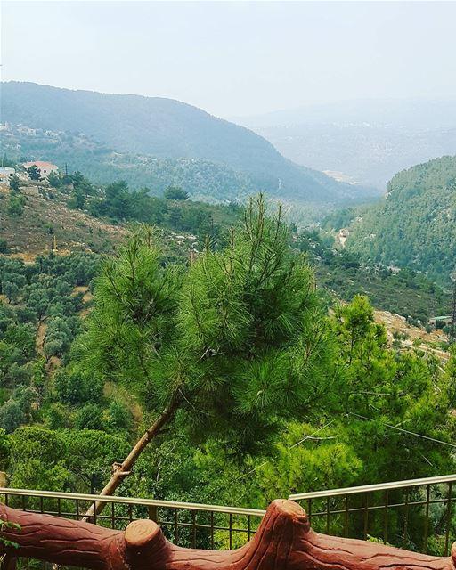 My beautiful lebanon jezzine view green everywhere pine weekend ... (Jezzine District)