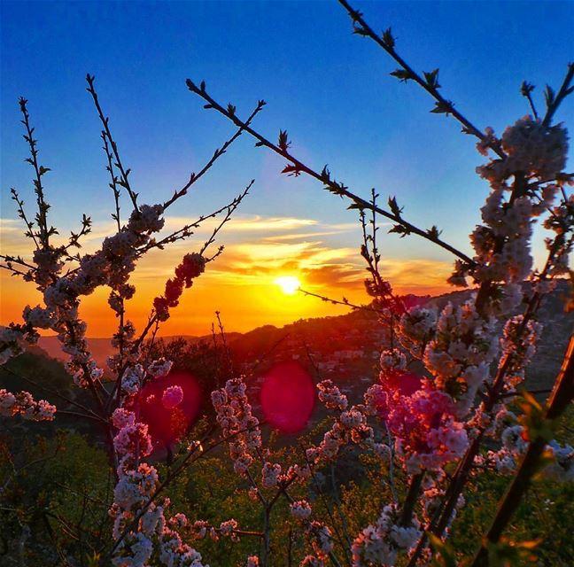 Enjoy every sunset ❤ nikontop_ nikonworld bns_sky bns_sunset ... (Beit Ed-Deen, Mont-Liban, Lebanon)
