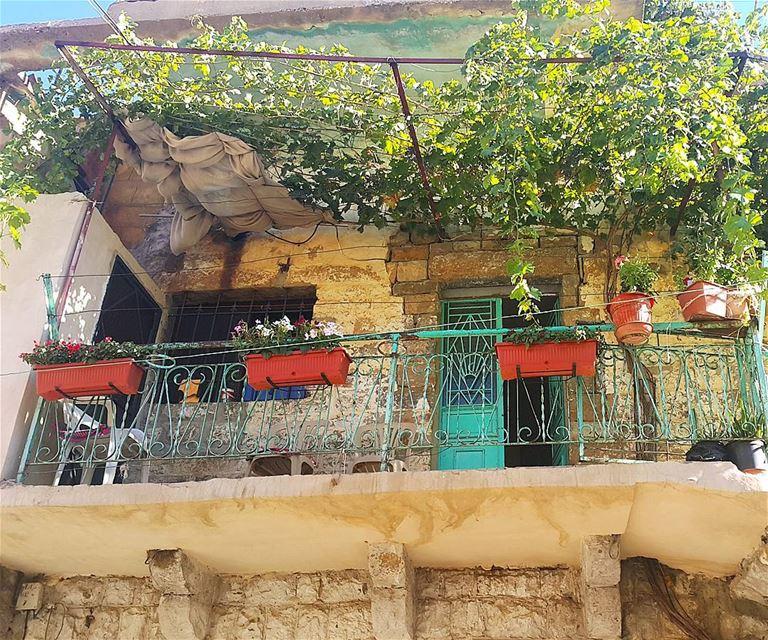 🏡💚🍀 (Bqa` Kafra, Liban-Nord, Lebanon)