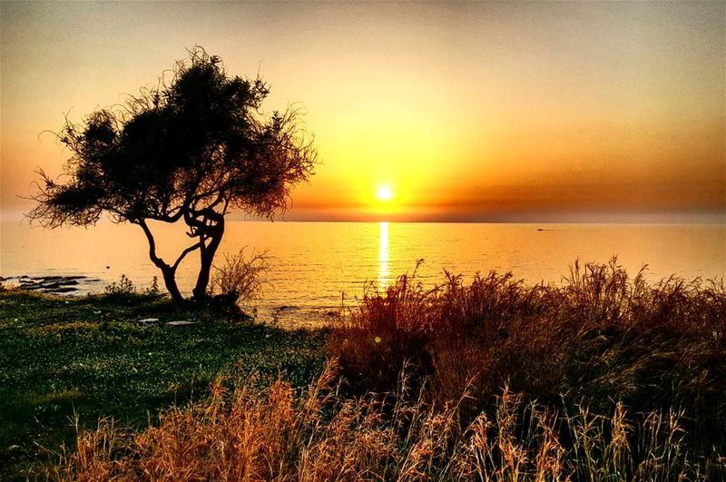 throwback to this beautiful sunset in Lebanon 🌅 livelovebyblos...