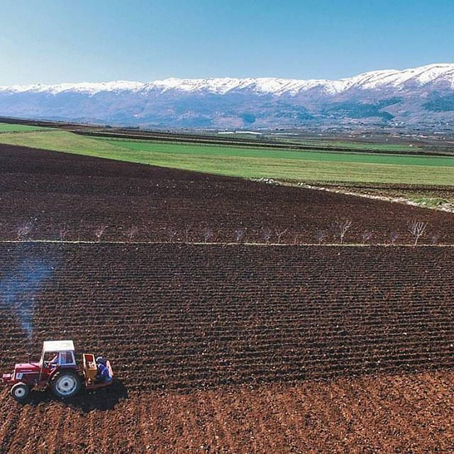 🚜 @livelovebekaa by @nady83 (Bekaa Valley)
