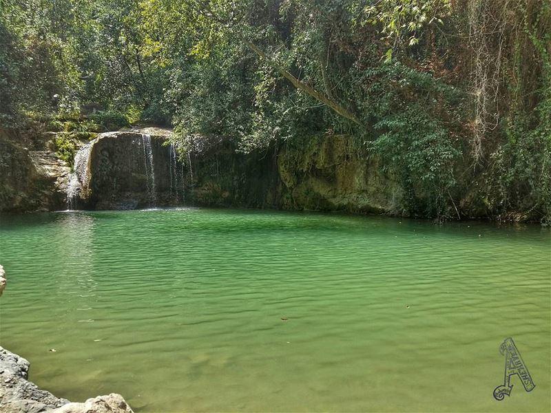 Throwback ➡ A year ago nature river photography lebanon ... (Jâhlîyé, Mont-Liban, Lebanon)