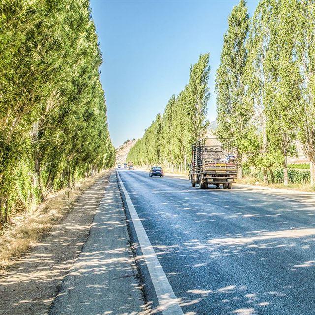 On the road 😊😊............. Lebanon livlovelebanon ... (`Ammiq, Béqaa, Lebanon)