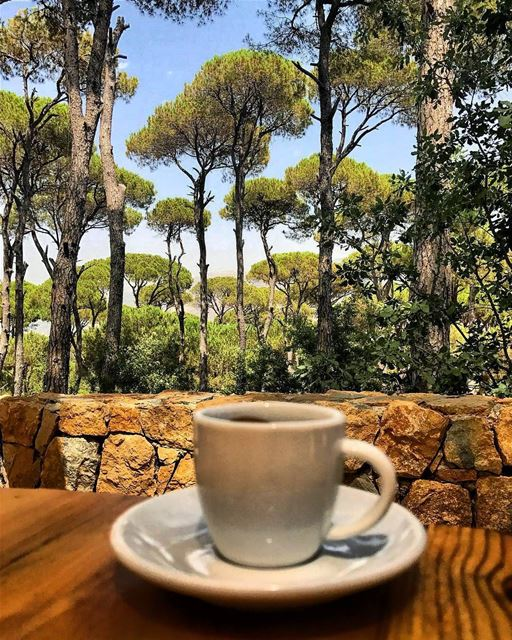 A perfect afternoon treat with a priceless view ☕😍 Photo Credits: @nes.lau