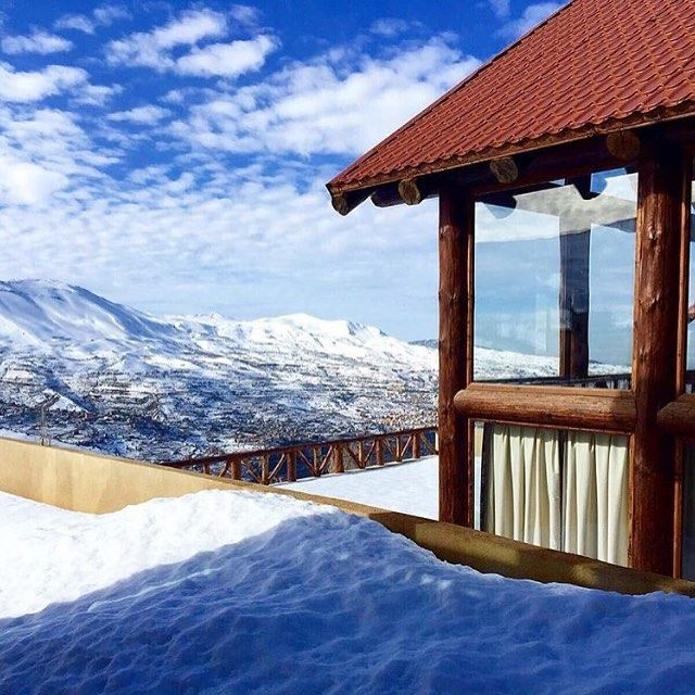 Moments of peace @livelovecedars by @leslogsdescedres (Cedars Of Lebanon)
